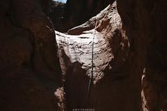 5R6K2648 (ATeshima) Tags: arizona nature havasu