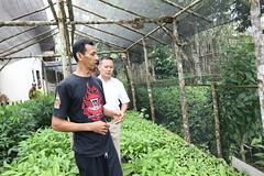 Bandar Agung Kunjungan Kak Wari ke para Petani di Banyuasin bersama Edhy Prabowo #Sumsel #Sumateraselatan #palembang #calongubernursumsel #lahat #muaraenim #tanjungenim #oganilir #pagaralam #prabumulih #muratara #okuselatan #okutimur #empatlawang #lahat # (bandaragung) Tags: agung bandar instagram ifttt