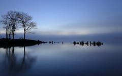 Morning Blues (Note-ables by Lynn) Tags: morning blue trees water monochrome dawn georgianbay serene minimalism bluelight wiarton colpoysbay greycounty