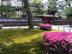 Kenroku-en Garden #1 1in Kanazawa (Fuyuhiko) Tags: city garden 1 town kanazawa kenrokuen ishikawa    pref