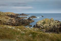 Costa Gallega (exotermo) Tags: costa mar paisaje galicia basura contaminacion oceano