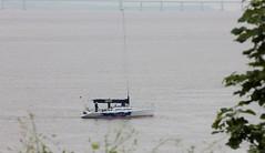 HERO Portishead June 2016 (Bristol Viewfinder) Tags: greyhound lighthouse dogs sailing portishead somerset hero mna avonmouth batterypoint portbury monnument merchantnavyassociation