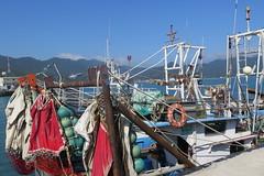 A la pche - 5 (Jean (tarkastad)) Tags: fish korea southkorea poisson fisk tarkastad core   bestioles coredusud