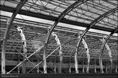 Warszawa, Aleja Armii Krajowej (facebook.com/DorotaOstrowskaFoto) Tags: blackandwhite monochrome metal architecture construction tunnel warsaw tunel warszawa konstrukcja buildingstructure carroute