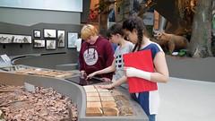 Landesmuseum-016