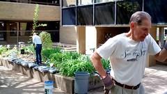 Leaning (Western Cuyahoga Audubon) Tags: youth conservation habitat beautification mentoring volunteerism environmentalconservation birdfriendly schoolprograms collaborativeleadership clevelandmunicipalschools waltonschool westerncuyahogaaudubon