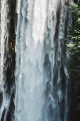 (Luigi Pica) Tags: flower detail nature landscape waterfall exploring drop pica luigi umbria marmore cascate