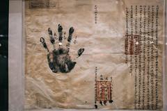 QF4C7766 (leslilundgren) Tags: hand parchment handprint pittriversmuseum