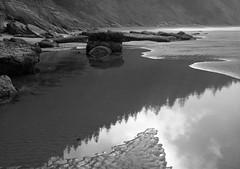 Oregon Coast (austin granger) Tags: morning light beach oregon reflections coast shore largeformat deardorff shortsandbeach