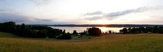 Mittsommernacht (Don Bello Photography) Tags: mittsommernacht midsummer sommer 2016 panorama tollensesee kleinnemerow mecklenburgvorpommern norddeutschland northerngermany neubrandenburg abendlicht abendstimmung abendhimmel abendsonne abendstille abendleuchten abendruhe sonne sonnenuntergang sonnenlicht wolken himmel himmelsbilder sonnenreflektion reflektionen wiese panasonicphotographer panasonicfz1000 lumixphotographer lumixfz1000 acdsee acdseeultimate9 reinhardbellmann donbello donbellophotography 50favorites 1000views 2000views 3000views explore 4000views 5000views 100favorites 10000views 15000views 20000views 25000views 150favorites 200favorites 250favorites 300favorites 30000views 350favorites 40000views 400favorites europa europe fz1000 50000views