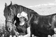 Kathleen und Ferdinand (Michael Lumme) Tags: portrait horses horse canon paul photography feld pony ferdinand sw schwarzweiss pferde weiss raps pferd schwarz harz friesen facebook acker rapsfeld friese rapsblte pferdeportrait facebookpage canoneos70d rapsknospe photomicha