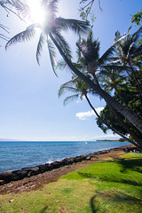 Launiupoko Beach Park (charlie.su) Tags: hawaii us unitedstates lahaina