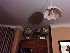 Staying at Mum's house (sixthland) Tags: cameraphone shadow lamp bedroom ceiling blipfoto iphone6