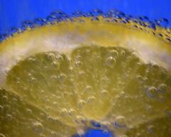 Lemon (AuntNett) Tags: bubbles hotcold macromondays lemon yellow slice nikon d7200 cold