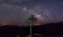 Alone with the Universe (Kylemcphins) Tags: brycecanyonnationalpark
