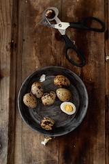 Huevos rellenos de crema de sobrasada y miel-Stuffed eggs sobrasada and honey cream (Dolores (Mi Gran Diversion)) Tags: food recipe huevos miel crema sobrasada receta quali stuffedeggs huevosrellenos codornis honeycream migrandiversion