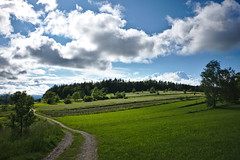 Waldviertel - Impressions (redy1966) Tags: 2016 waldviertel oesterreich outdoor sky blue green forest wood track meadow quarter
