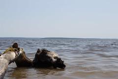 IMG_1866 (GabrielBlaisD) Tags: new summer ontario canada liskeard