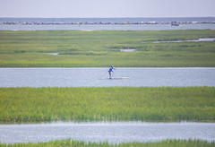When There's No Other Way (Gabriel FW Koch) Tags: surfboard poling water grass marsh green nature sun sunlight blue sky canon telephoto 600mm eos dof distant ocean break