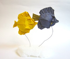 Pair of Tangs (folding~well) Tags: fish yellow paper origami purple folding tang