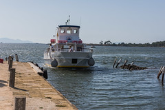 DSC_5645 (Pasquesius) Tags: sea ferry island boat barca mare lagoon sicily laguna saline sicilia saltponds isola traghetto marsala mozia mothia stagnone motya riservanaturaledellostagnone