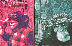 Chimps Urban Painting (shaire productions) Tags: sf sanfrancisco street urban art photo artwork image artistic arts picture pic event creation photograph metropolis imagery howweirdartistalley