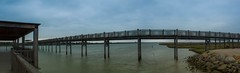 Pano (T3x) Tags: park parque beach water dawn raw natural wildlife country playa amanecer campo reserva valdelagrana toruos lostorunos