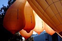 Skywhale 2-4683.jpg (Leo in Canberra) Tags: boobs balloon australia hotairballoon canberra act centenary patriciapiccinini 2013 skywhale hindenboob
