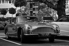 white black london blanco martin y negro londres 1967 dorchester aston db6