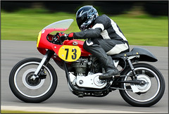 bike 00090A (Phil Newell) Tags: classic racing motorbike 500 racer bsa no73 goldster