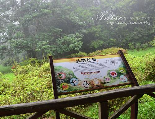 福山植物園_040.jpg