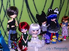 Kedada (21/07/13) (> Lily <) Tags: little stock noel pullip custom pere fee eris ante minion obitsu cinciallegra taeyang byul littlefee rewiged