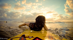 Paddle out (niniquedesigns) Tags: ocean sunset sea shells beach water girl sunrise glasses sand surf heart ukulele surfer paddle australia surfboard queensland mctavish raybans