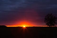 Buffalo Sunset (cinnamn112) Tags: sunset colors buffalo purple