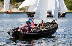 Tjäring (Look at the Birdie!) Tags: archipelago prestart harö harödagen lillöka gummerholmen claesm