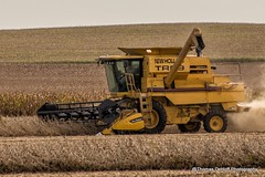 New Holland TR 89 Combine (Thomas DeHoff) Tags: new holland rural sony iowa combine farms soybeans harvesting a580 tr89