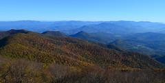 Fall Color (davidwilliamreed) Tags: mountains color fall leaves georgia north brasstownbald highestpointingeorgia