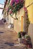 El rincón de las flores (SantiMB.Photos) Tags: street flowers flores bicycle geotagged calle elba italia bicicleta ita toscana tamron 18200 portoferraio 500px 2tumblr vacaciones2012 geo:lat=4281603537 geo:lon=1033183157