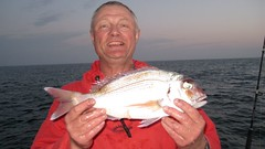 "Fuerteventura red bream • <a style=""font-size:0.8em;"" href=""http://www.flickr.com/photos/113772263@N05/11835325776/"" target=""_blank"">View on Flickr</a>"