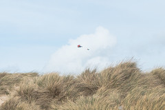 Kite on another windy day (BournemouthMike) Tags: sky kite grass weather clouds canon fun flying interesting sand day wind cloudy dunes horizon windy dorset sanddunes hengistburyhead