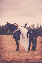 Yohanna & Andreas (Pierre Pocs) Tags: wedding horse groom bride magical whitedress trashthedress blackstalion
