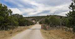 But Google Maps suggested this was the way to Interstate 10.. (Lars Plougmann) Tags: road sign texas cows trespassing lp3364