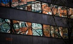 Madrid reflected (nemi1968) Tags: madrid windows house reflection building window glass canon spring markiii canon5dmarkiii ef70200mmf28lisiiusm ef70200mmf28liiisusm
