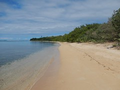 Seven Seas Beach (tquist24) Tags: beach puerto nikon puertorico rico seven tropical coolpix fajardo seas caribbeansea aw100 sevenseasbeach nikoncoolpixaw100