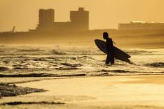 SURFER (biarritz73) Tags: sunset surf surfer kanagawa shonan kugenuma