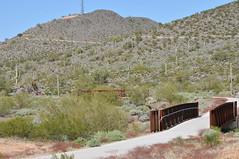 Skip Rimsza Paseo 2 (HockeyholicAZ) Tags: arizona cactus phoenix architecture hiking trails sidewalk saguaro mountainbiking sonorandesert wheelchairaccessible environmentalimpact desertvista sonoranpreserve apachewashtrailhead adafriendly skiprimszapaseo