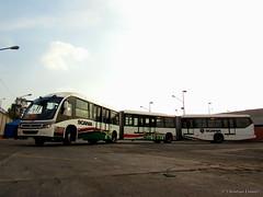 Scania Neobus Mega BRT   Sistema Metrobús (Christian Ventura MX) Tags: scania biarticulado metrobús neobus megabrt elautobúsmaslargodeméxico