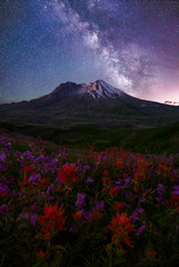 Loowit Dreams (Michael Bollino) Tags: flowers sky night stars landscape volcano washington northwest galaxy pacificnorthwest wildflowers paintbrush milkyway mountsainthelens