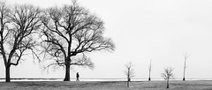 Observer (artversion) Tags: winter chicago cold lakeview belmontharbor 28300mmf3556 nikond810 nikkor28300mmf3556