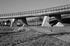 (Sean Anderson Classic Photography) Tags: bridge minolta f4 3570 minolta3570f4 sonya700